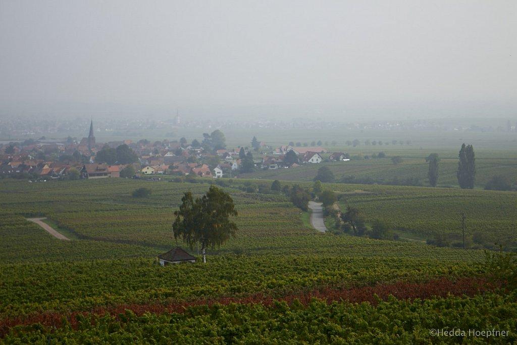 Roth unter Rietburg